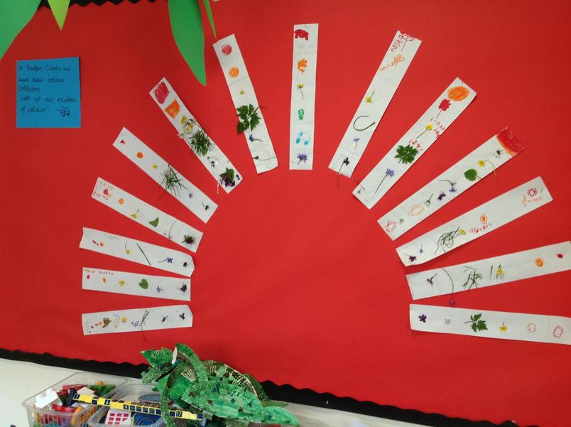 - We had to find plants of different colours in our school environment to create a rainbow