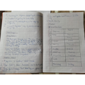 Super English and topic work by Lewis