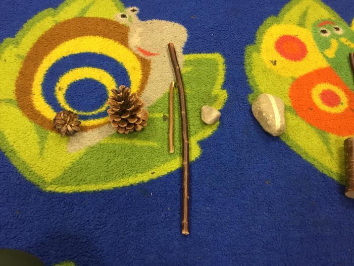 Small pine cone, big pine cone, small stick, big stick ....
