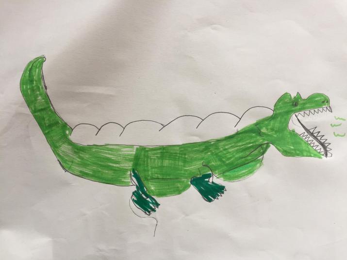 Subhan's alligator.
