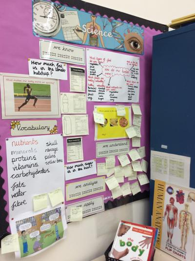 Science working wall