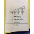 recording our bean