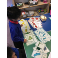 Sorting picture cards by colour