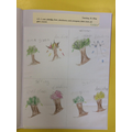 deciduous and evergreen trees