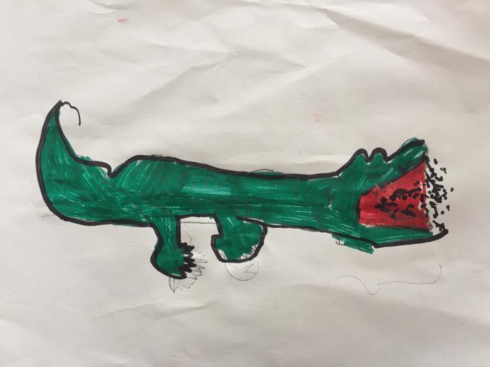 Mariyam's alligator.