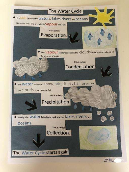 Water Cycle Explanation Poster by Mia