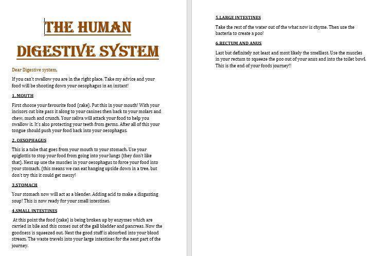Ben's digestive system information.