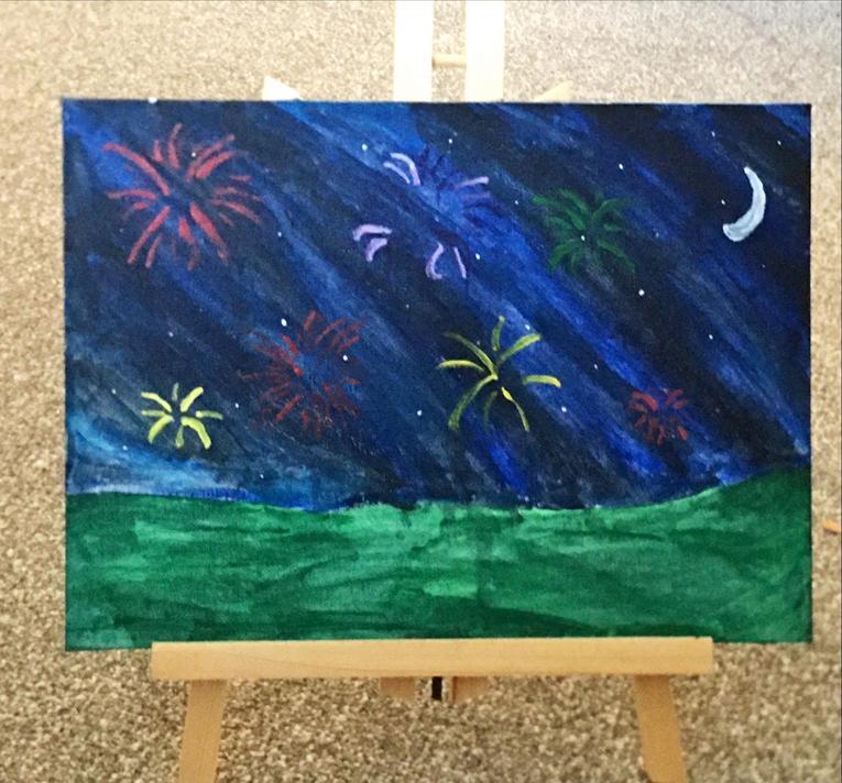 Demi T's fantastic firework night sky
