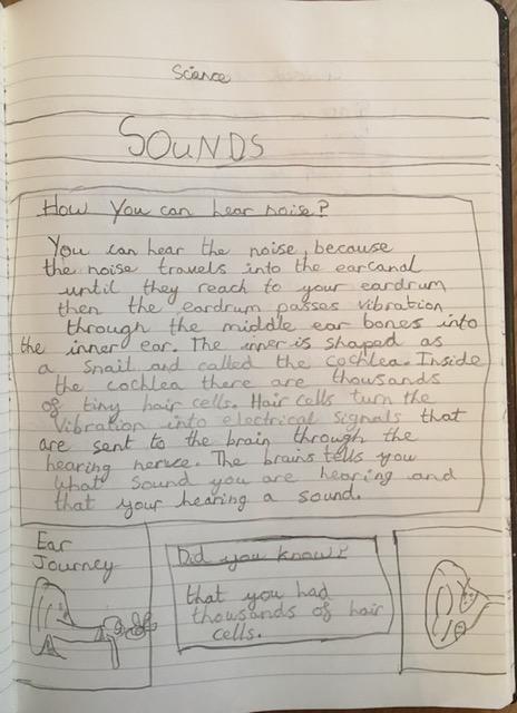 Keva has written great information on sound.