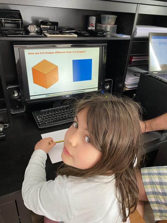 Mia Year 2 3D shapes