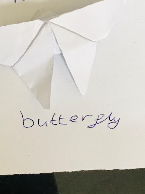Kavena Year 6 origami