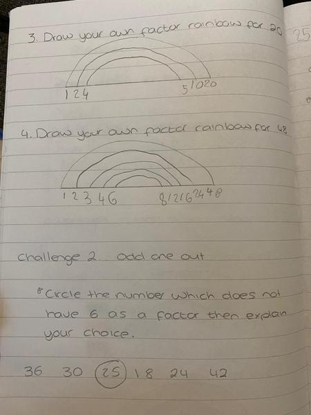 Check out Hayley's wonderful Maths!