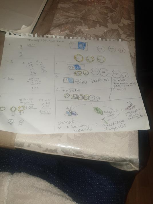 Sariah Year 2 maths and science work