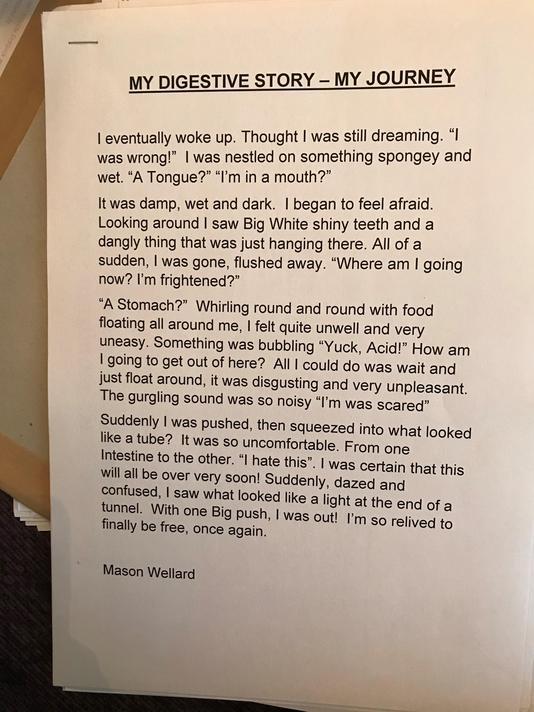 Mason W's great digestive system story