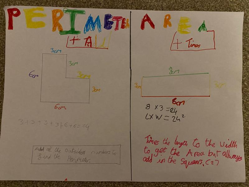 Hayley's poster on perimeter and area.