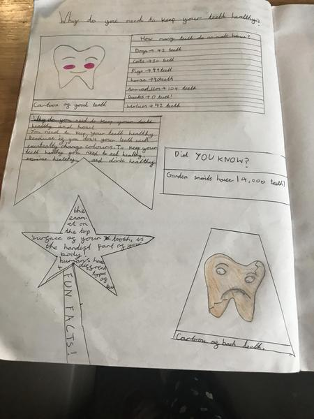 Coco's created a colourful teeth poster!