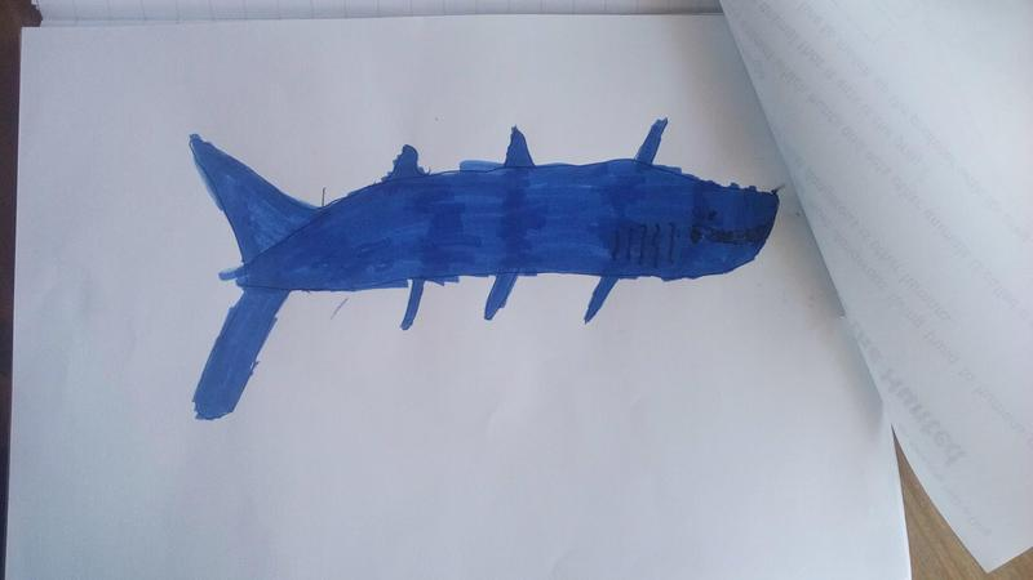 Dorian Year 3 shark painting