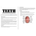 Enjoy reading Ben's detailed report about teeth.