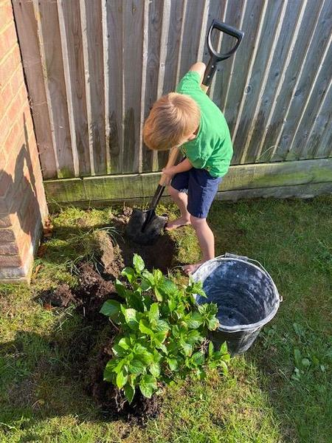 Raivo Year 1 gardening