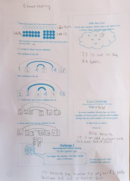 Esmae's  brilliant Maths work.