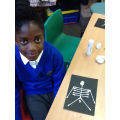 What bones can you spot on our skeletons?