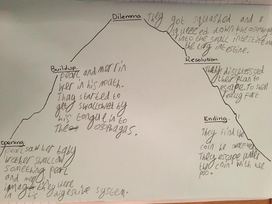 Erin's story mountain.