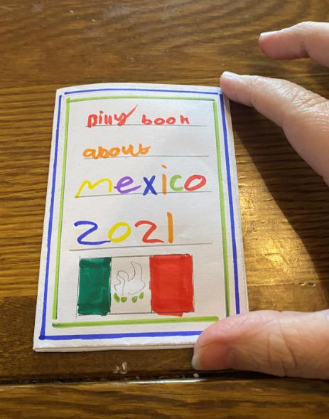 Billy's Mexico Zine