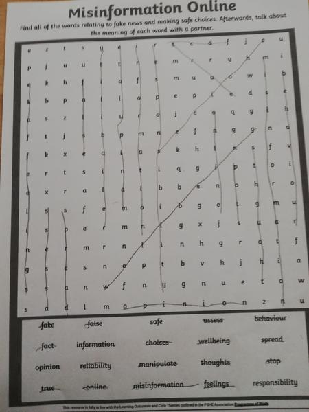 Cyrus had a go at the safer internet day wordsearch.