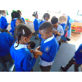 Playing quiz quiz trade with phonic stones,