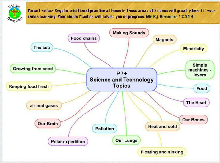 Primary seven extended topics