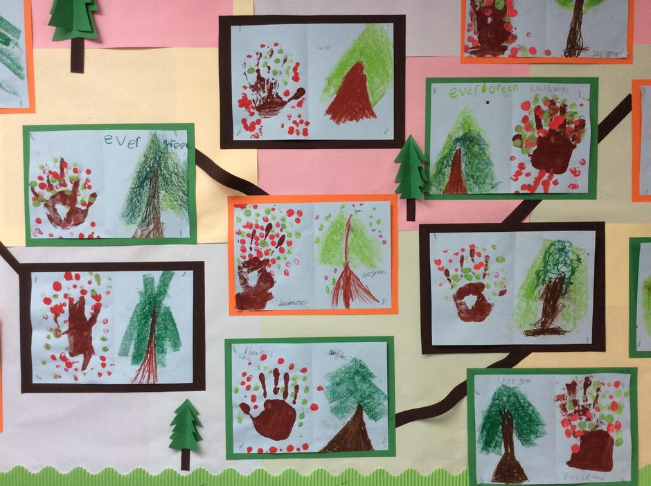 All about Trees - Class 1 - Mrs Bruce 2019