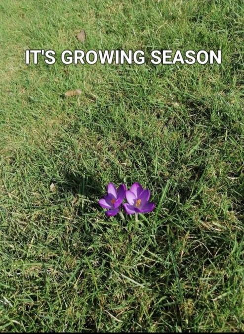 """""""It's growing season"""" by Vincent Y1"""