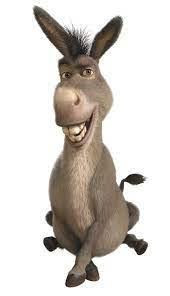Her favourite film character is Donkey from Shrek.