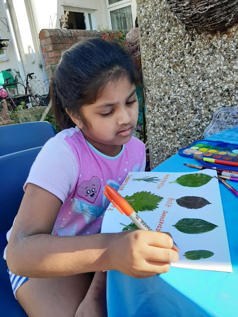 Learning plant names and species