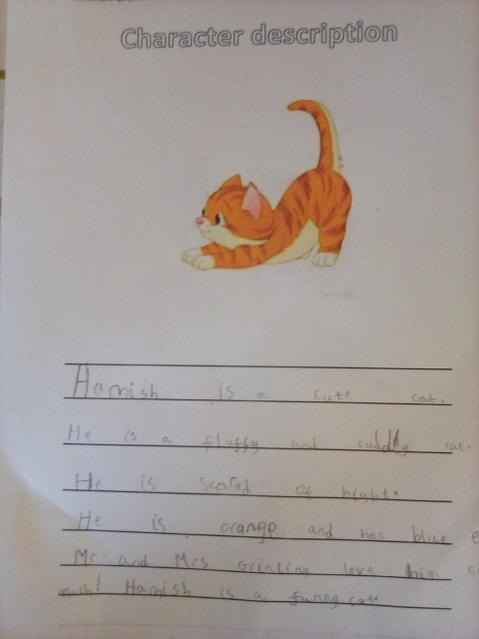 A great description of Hamish the cat.