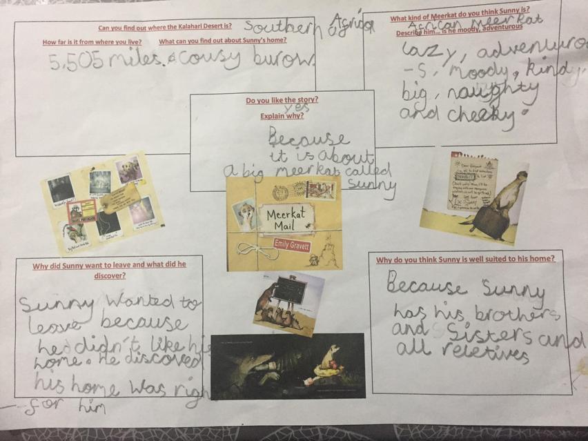 Getting stuck in a book- Meerkat Mail