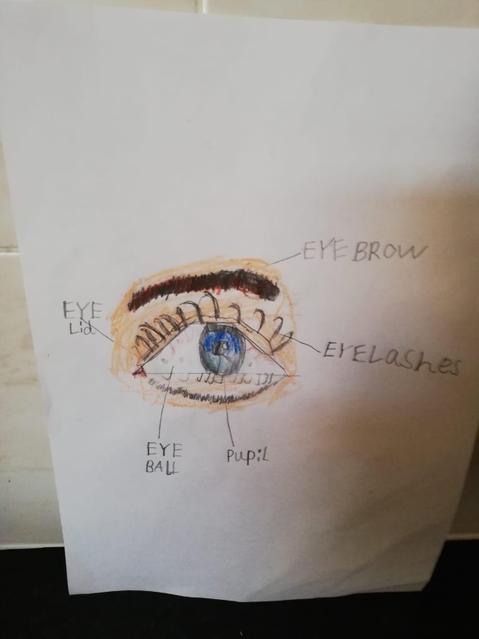 An amazing eye drawing!