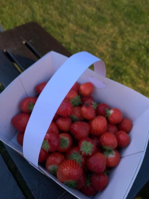 Mrs Kitchen went strawberry picking on Sunday.