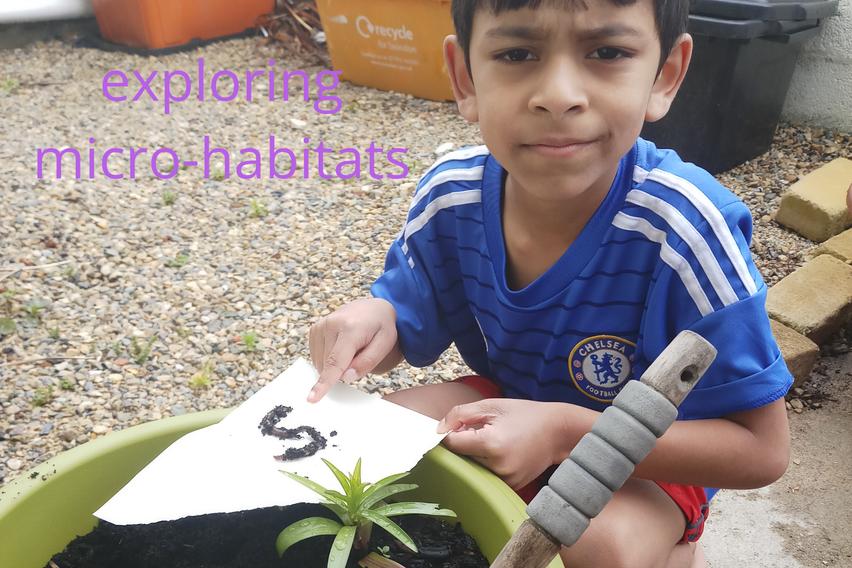 Exploring Microhabitats