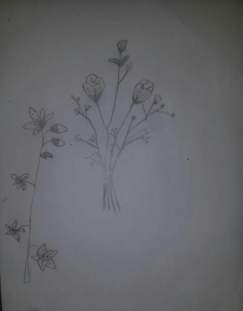A beautiful sketch of some wild flowers!