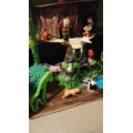 Yeshua's creative rainforest!