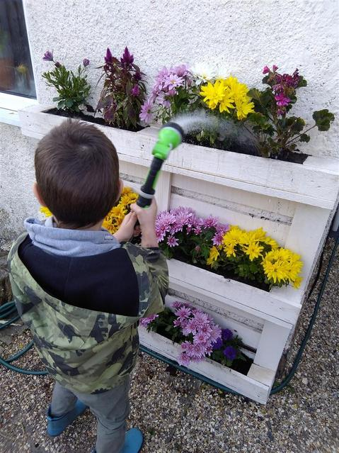 Helping the flowers to grow