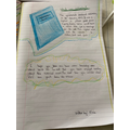 A brilliant non-chronological report by Olivia