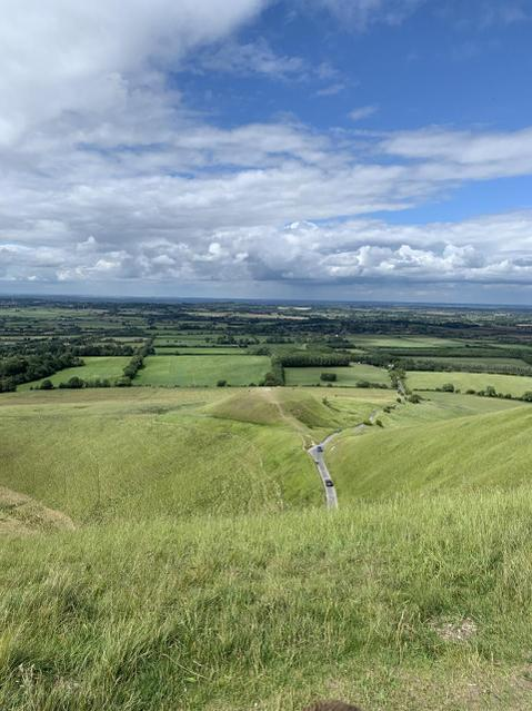 ... and then went for a walk up White Horse Hill