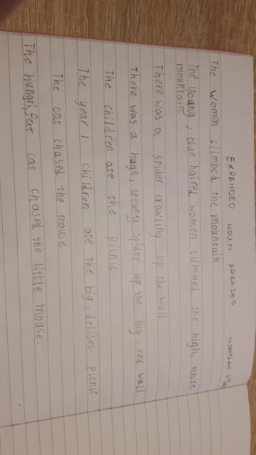 Adding detail to sentences