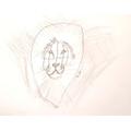 Lion art! :)