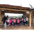 Year 2 at Chester Zoo