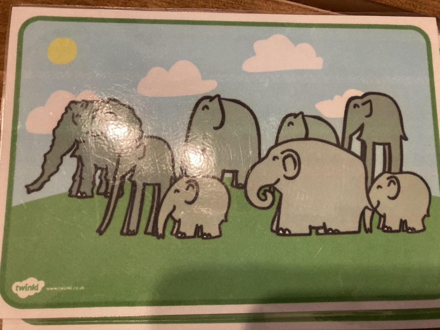 How many elephants can you see?Is Elmer in the picture? Where do you think elephants live?