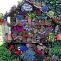 If you like bees - plant lots of flowers1
