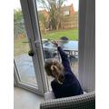 Watching for birds in the garden